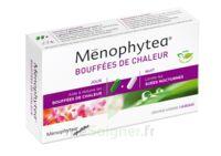 MENOPHYTEA BOUFFEES DE CHALEUR, bt 40 (20 + 20) à St Médard En Jalles