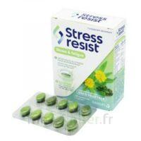 Stress Resist Comprimés Stress & fatigue B/30 à St Médard En Jalles