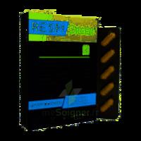 Synactifs Respigreen Bio Gélules B/10 à St Médard En Jalles
