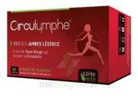 Santé Verte Circulymphe Triple Actions B/60 à St Médard En Jalles