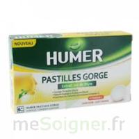 HUMER PASTILLE GORGE à l'etrait sec de thym 24 pastilles à St Médard En Jalles
