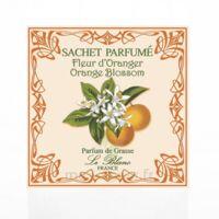 Le Blanc Sachet Parfumé Fleur d'Oranger à St Médard En Jalles