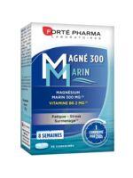 Magné 300 Marin (2 mois) à St Médard En Jalles