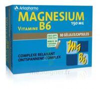 Arkovital Magnésium Vitamine B6 Gélules B/120 à St Médard En Jalles