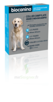 Biocanipro Collier chien B/1 à St Médard En Jalles
