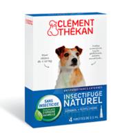 Clément Thékan Spot-on Solution externe petit chien 4 Pipettes/2,5ml à St Médard En Jalles